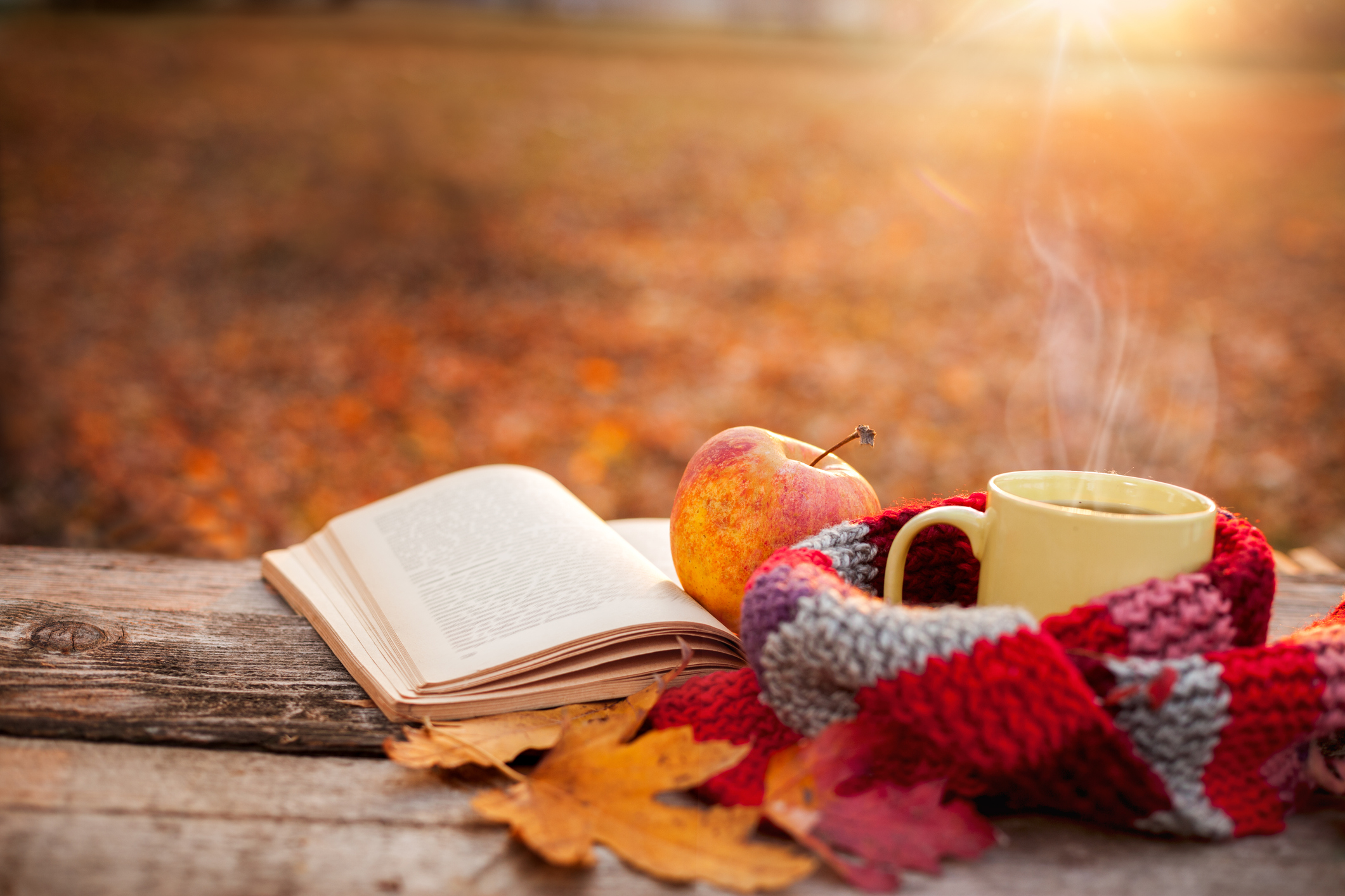 3 Reasons Why Fall Might be the Best Season Juniper Wealth Management